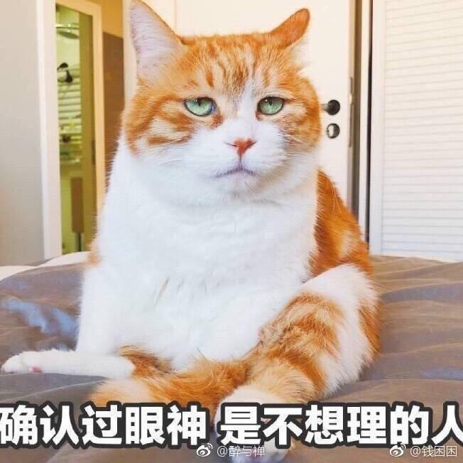 姐姐啪日日啪免费视频15txbcom
