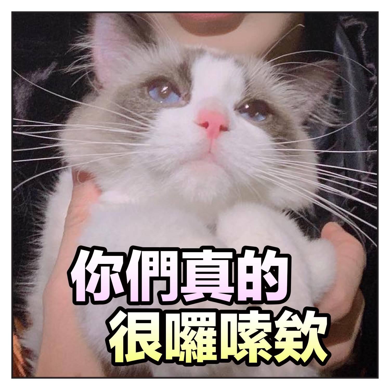 周梦晗怀孕